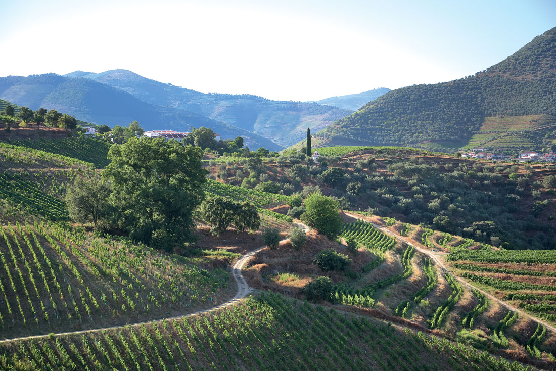 Travel in Douro